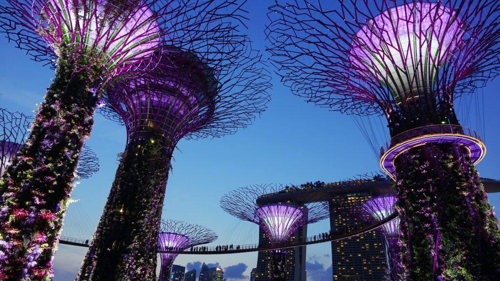 Calidad de vida en Singapur.
