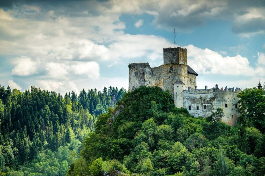 Hermoso paisaje boscoso de Polonia
